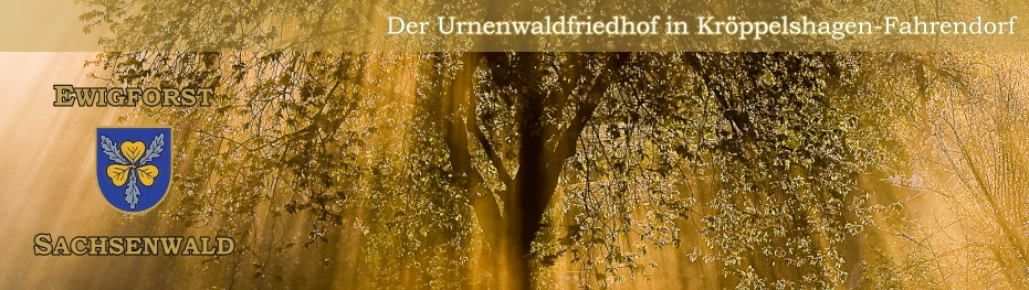 Ewigwald Sachsenwald